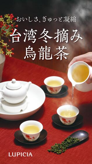 おいしさ、ぎゅっと凝縮 台湾冬摘み烏龍茶